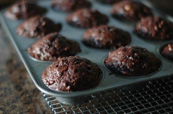 choc muffins (1 of 1)-3