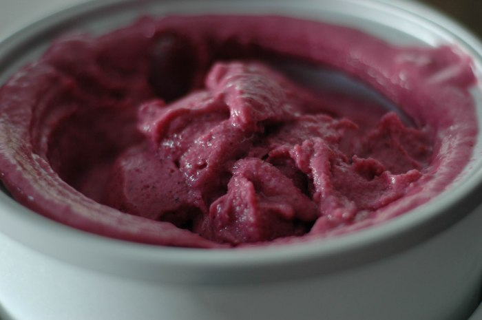very berry frozen yogurt (1 of 1)-4