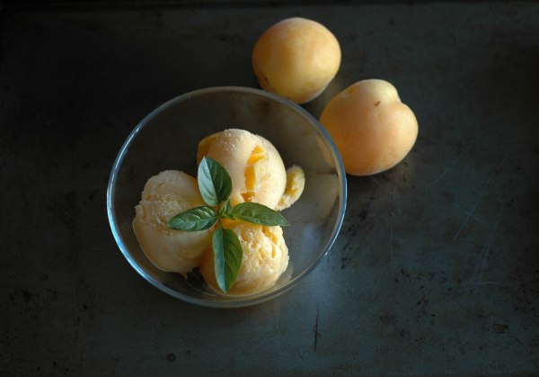 apricot Sorbet (1 of 1)-10