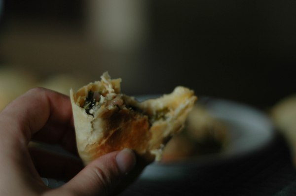 Chicken Hand Pies (1 of 1)-8