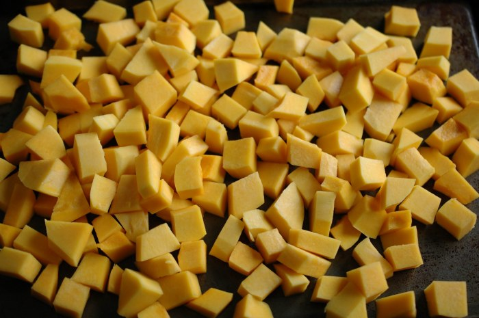 Curried Butternut squash Soup (1 of 1)