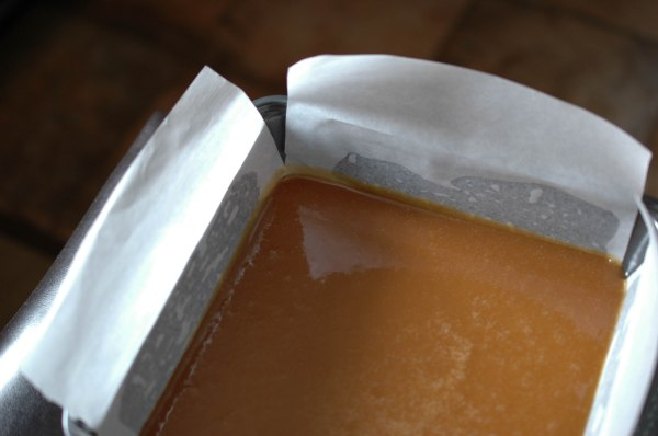 Apple Cider Caramels (1 of 1)