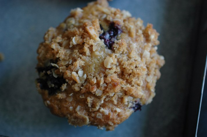 Blueberry Strusel Muffin-11