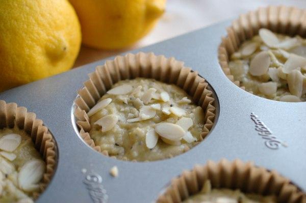 Lemon Poppy Seed Muffins - Gluten Free-3