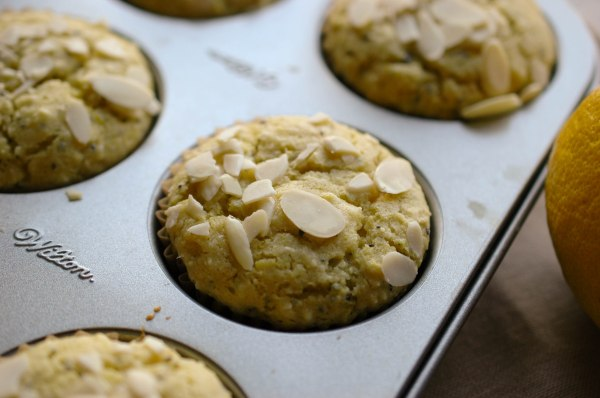 Lemon Poppy Seed Muffins - Gluten Free-5