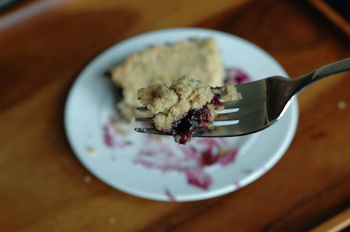 BlueBerry Crumb Bars-5