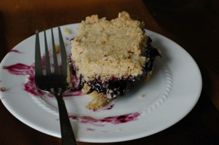 BlueBerry Crumb Bars-6