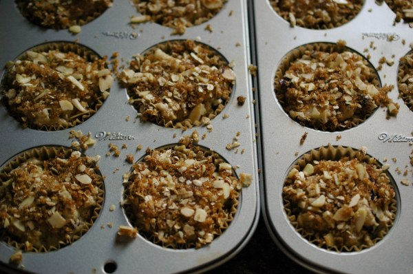 Cranapple Streusel Muffins-3