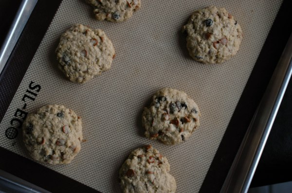 oatmeal cinnamon chip cookies-3