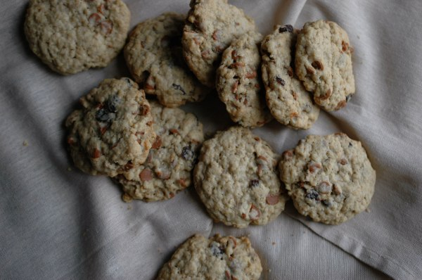 oatmeal cinnamon chip cookies-5