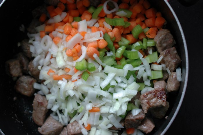 Beef Stew With Dumblings-2