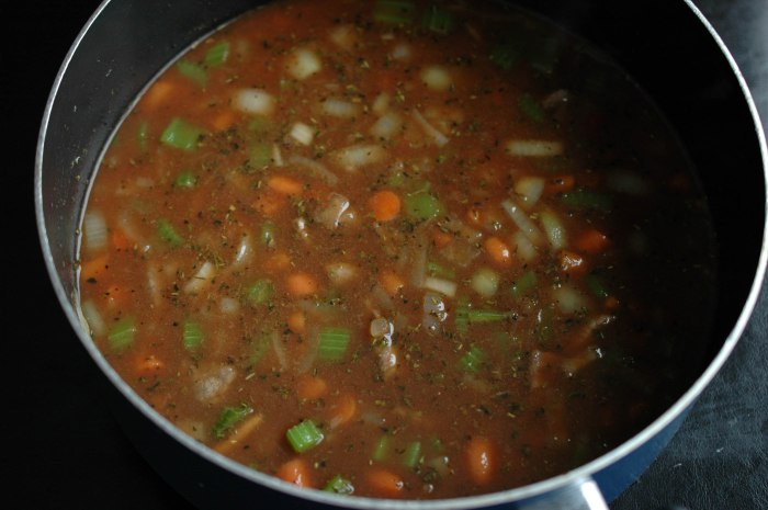 Beef Stew With Dumblings-3