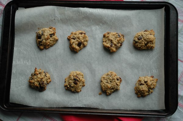 Peanut Butter Banana Oatmeal Raisins Cookies-5